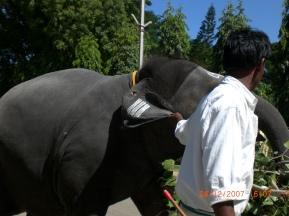 INDIA TRIP 07 099